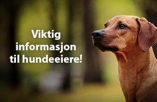 Viktig informasjon til hundeeiere