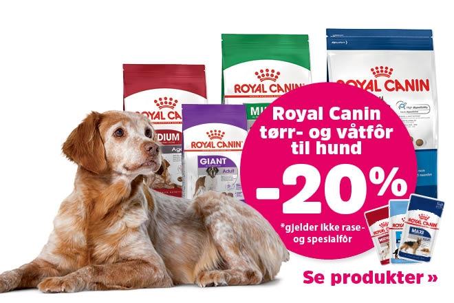 20% på utvalgt fôr fra Royal Canin