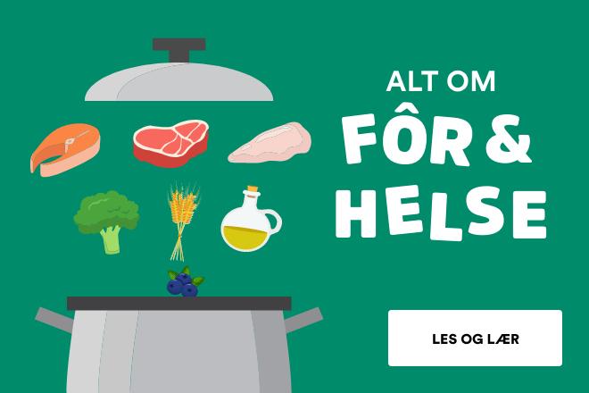 Fôr og helse for ditt kjæledyr