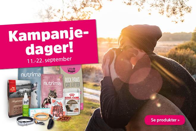 Septemberkampanjen er i gang!