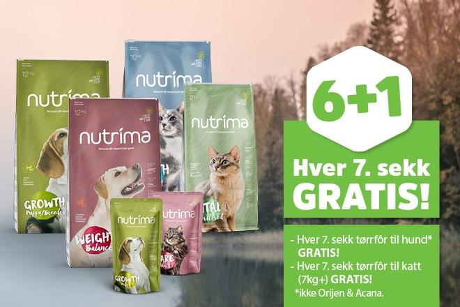 Hver 7. sekk med tørrfôr til hunder gratis