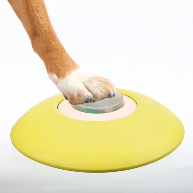 Trixie Hund Aktivitet Minnespill