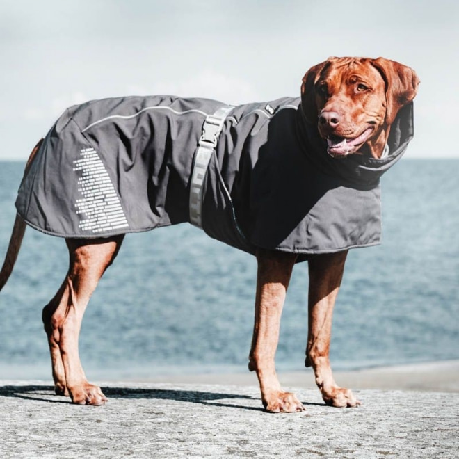 Kjøp hundeklær og tilbehør fra Hurtta på nett Musti
