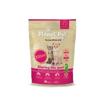 Planet Pet Society Cat Kitten**
