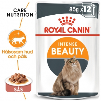 Royal Canin Intense Beauty in Gravy 12x85 g