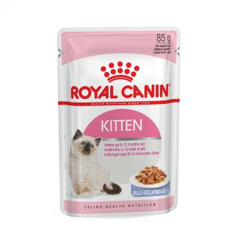 Royal Canin Kitten in Jelly (85 gram)**