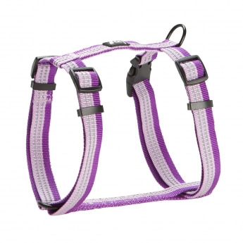 Feel Active Nylon Sele Randig Violett