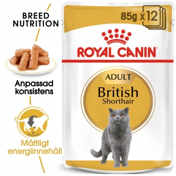 Royal Canin British Shorthair 12 x 85 g