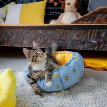Little&Bigger Banana Kattbädd