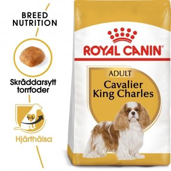 Royal Canin Breed Cavalier King Charles Spaniel