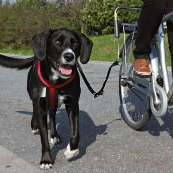 Trixie Biker-Set Big Dog för cykel
