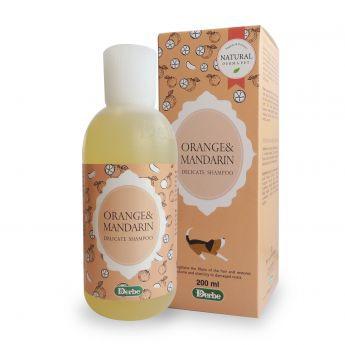 Derbe Orange&Mandarin Shampoo 200ml