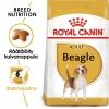 Royal Canin Breed Beagle Adult**