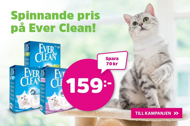 Ever Clean 10 liter för endast 159 kr