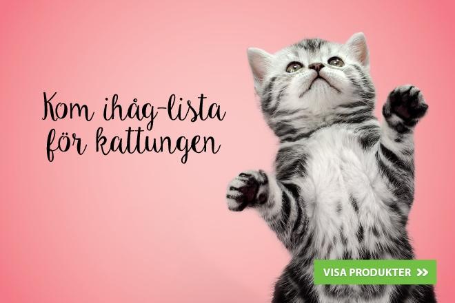 Kom ihåg-lista för kattungen