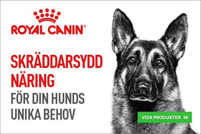 Royal Canin Hundmat