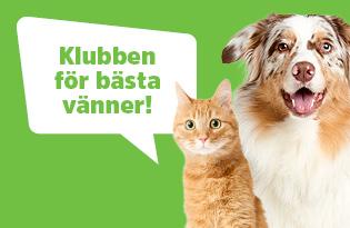 Arken Zoo Kundklubb - Klubben för våra bästa vänner