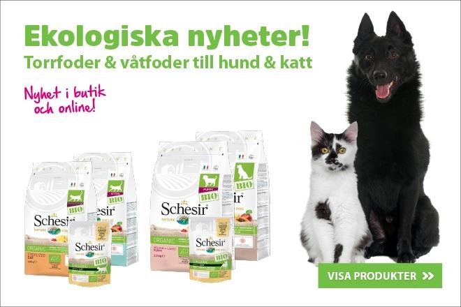 Ekologiska nyheter! - Schesir Bio foder till både hund och katt