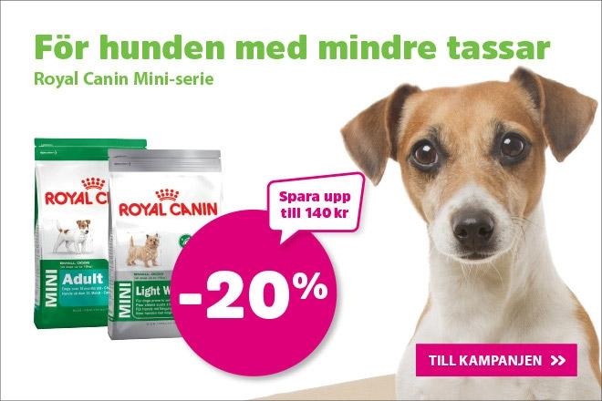 20% på Royal Canin Mini Hundmat