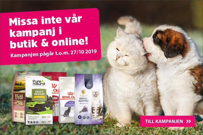 Missa inte vår kampanj i butik och online!