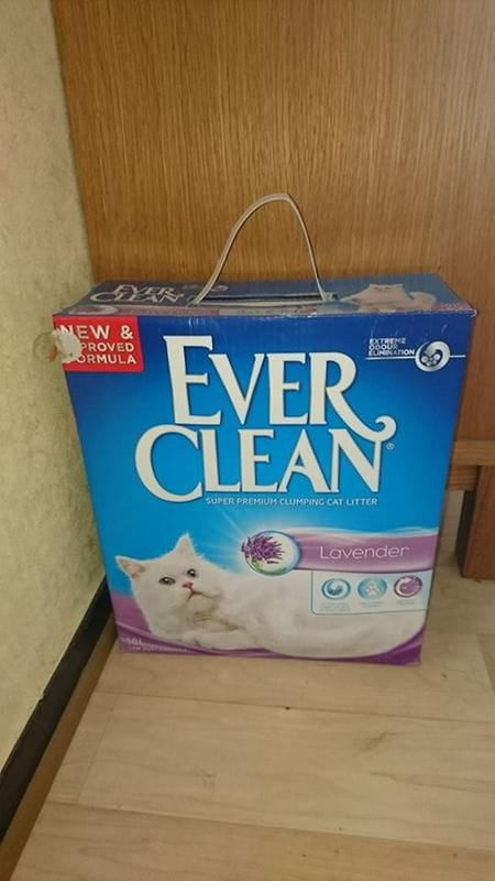82/ever-clean-kattsand-82.jpg