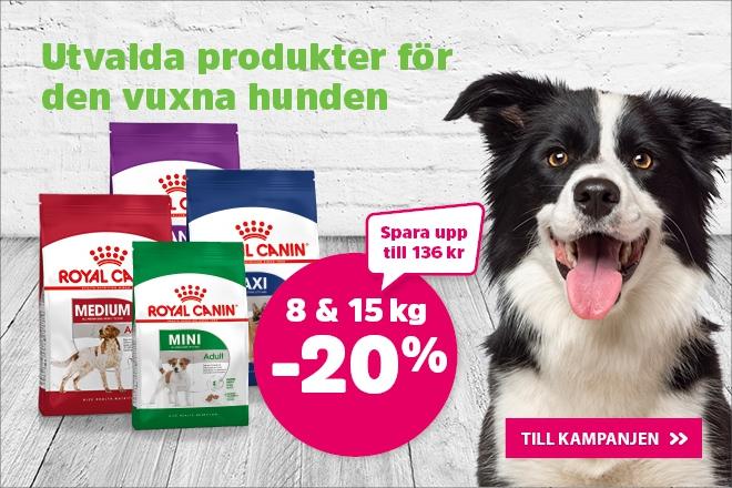 20% på Royal Canin hundmat