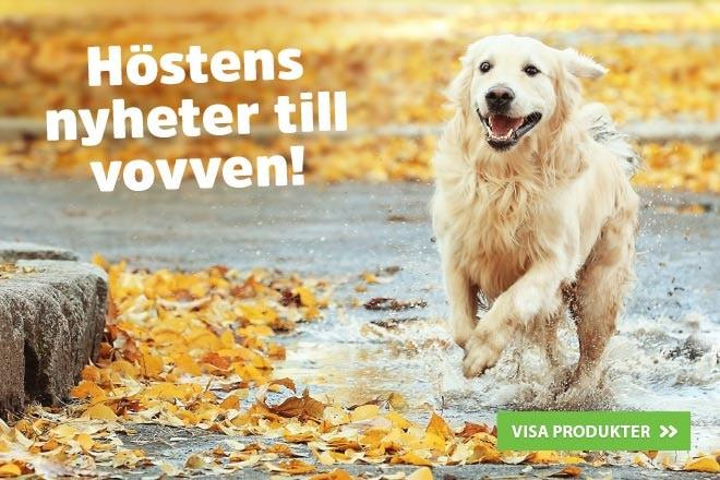 Höstens nyheter till vovven på arkenzoo.se