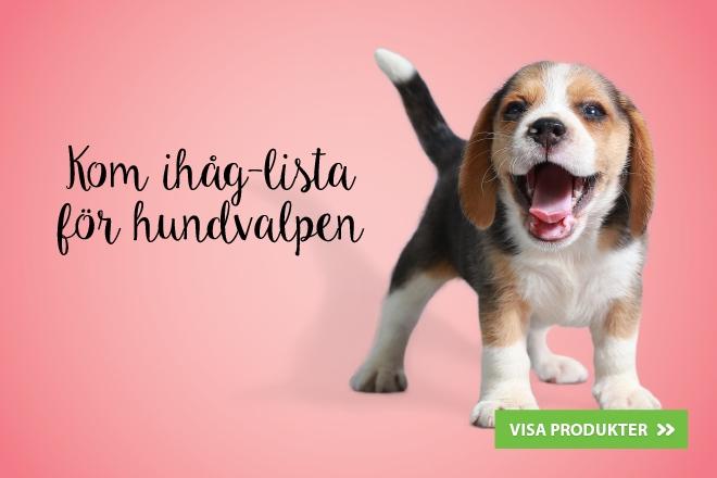 Kom ihåg-lista för hundvalpar