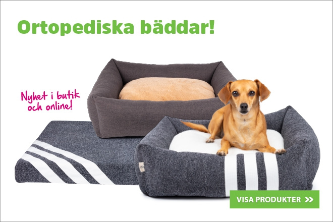 Ortopediska hundbäddar