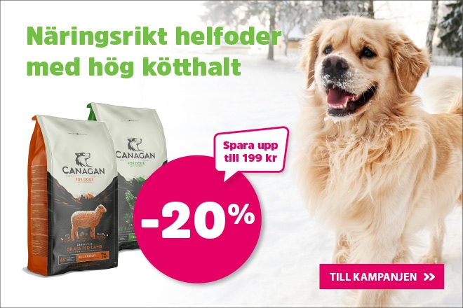 20% på Canagan torrfoder till hund