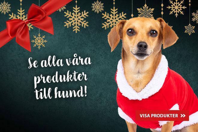 Se alla våra produkter för hund