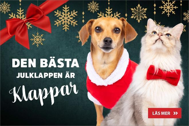 Den bästa julklappen är klappar