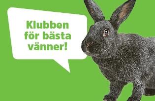 Arken Zoo Kundklubb