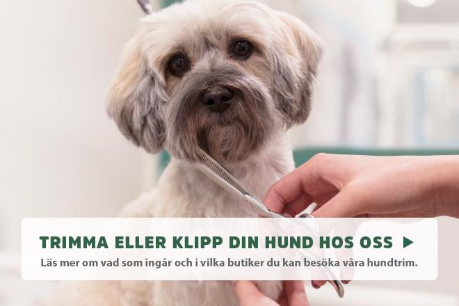 Boka hundtrim online!