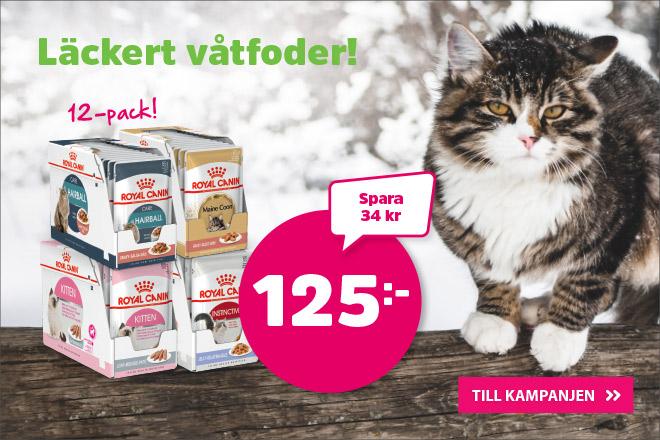 Royal Canin storpack våtfoder nu 125 kr
