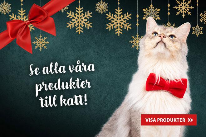 Se alla våra produkter för katt
