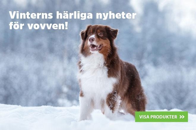 Vinterns nyheter för vovven