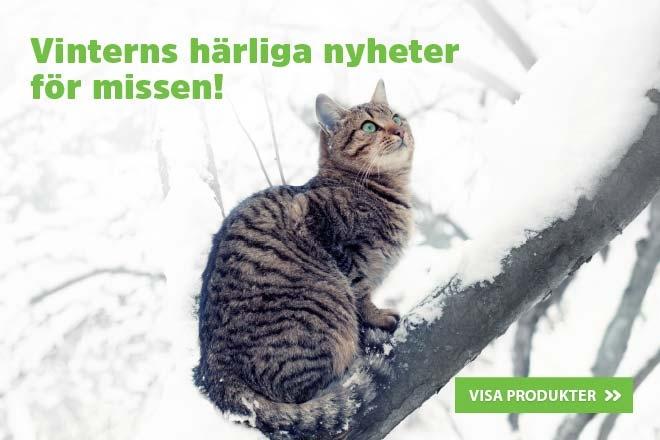 Vinterns nyheter för missen