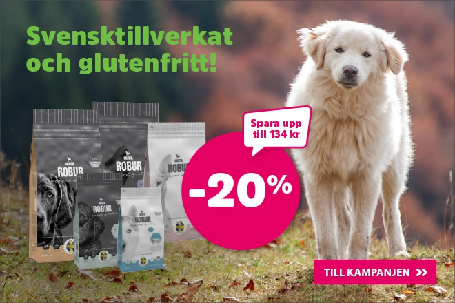 Fantastisk Vi har allt din hund behöver! | Arken Zoo TK-31