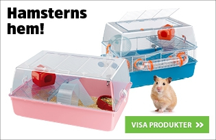 Hamsterburar