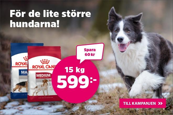 Supererbjudande - Royal Canin Medium & maxi 15 kg för 599 kr