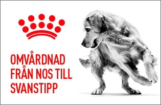 Royal Canin Care
