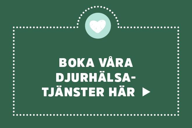 Boka tjänst hos Arken Zoo Djurhälsa