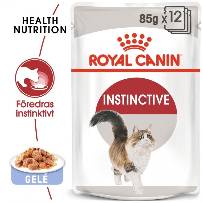 Royal Canin Instinctive Jelly 12x85 g