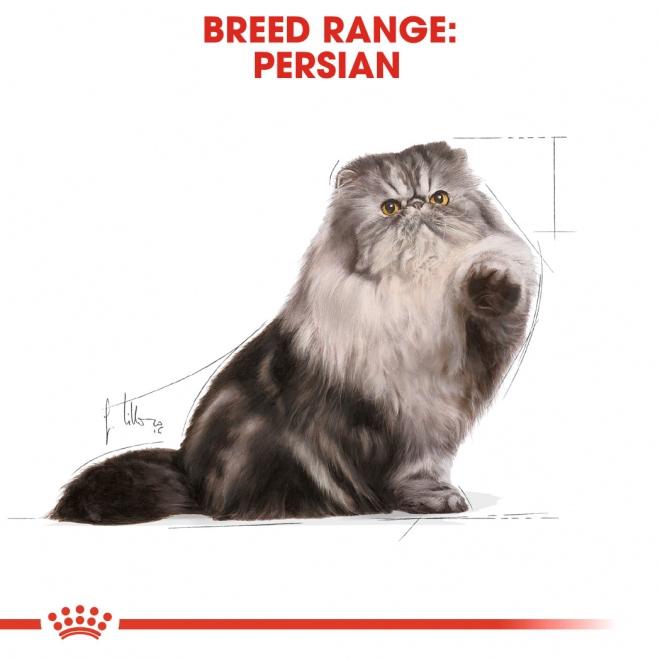 Royal Canin Persian Loaf 12 x 85 g