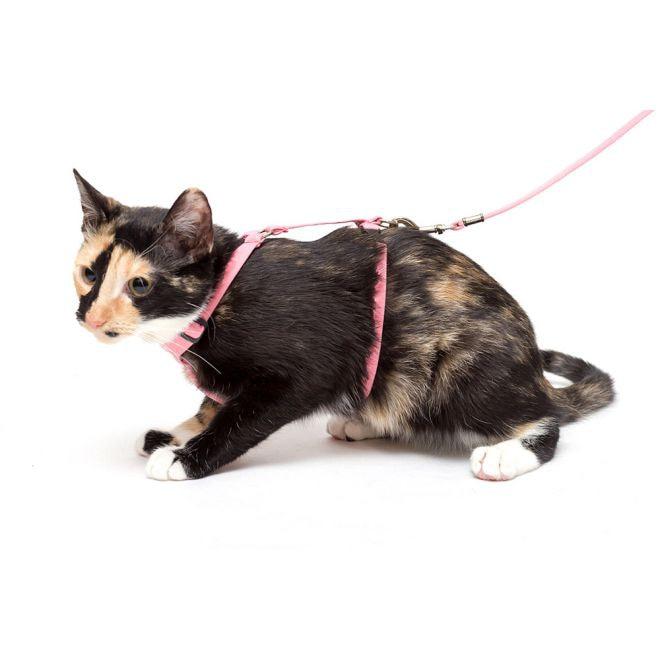 Basic Sweet Kattsele Rosa**