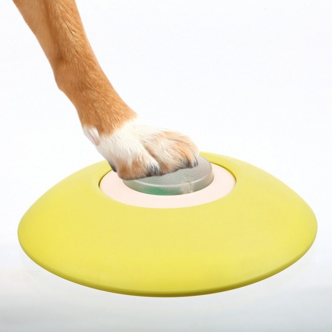 Trixie Hund Aktivitet Minnespel