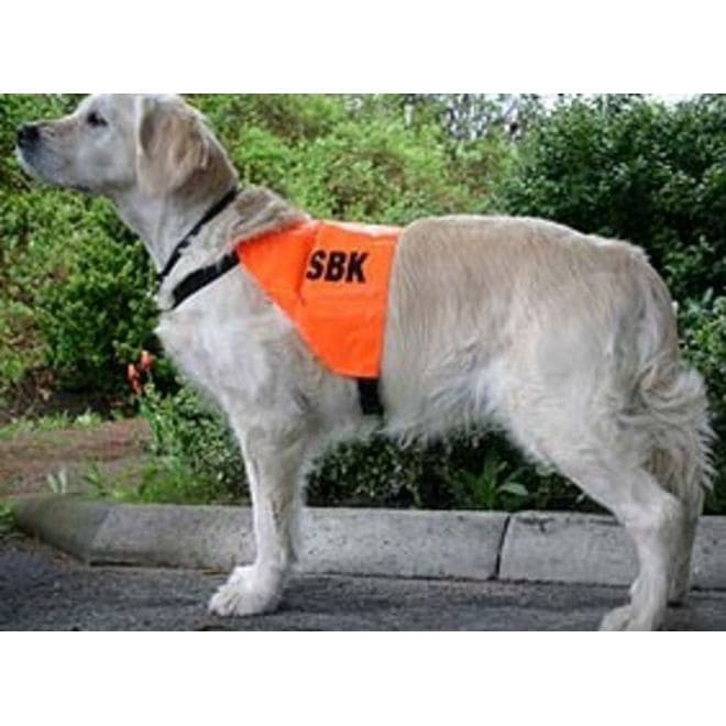 SBK:s Tävlingsväst Orange