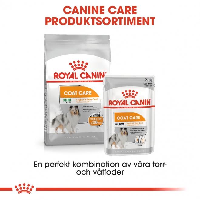Royal Canin Coat Care Mini Adult