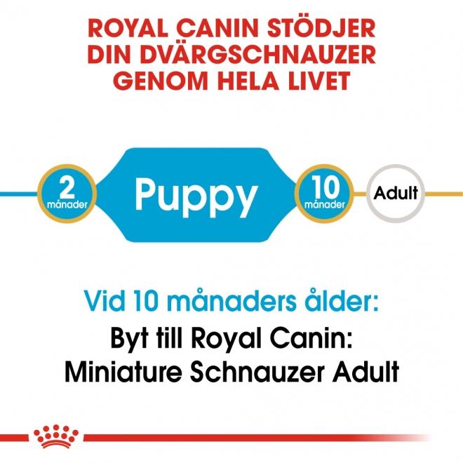 Royal Canin Breed Mini Schnauzer Junior